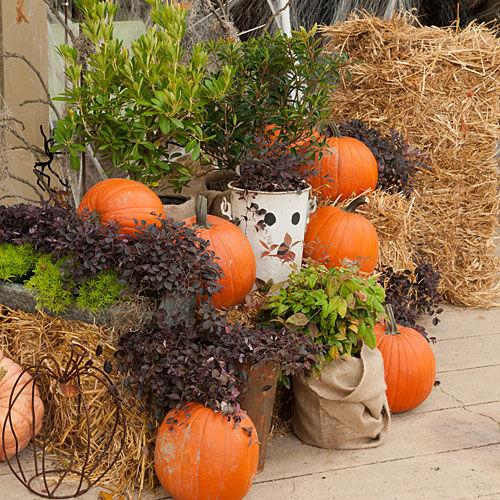 "<p>Group heirloom pumpkins, plants wrapped in burlap and fun metal pieces for a warm welcome. Spread spider webs in the background for a haunted entryway.</p> <p><strong>Get the Look</strong></p> <ul><li><a rel=""nofollow"" href=""http://southernlivingplants.com/"">Find all these in the <em>Southern Living</em> Plant Collection</a></li> </ul>"