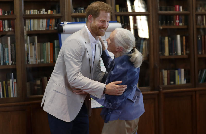 Prince Harry, Duke of Sussex and Dr Jane Goodall hug as he attends Dr. Jane Goodall's Roots & Shoots Global Leadership Meeting at Windsor Castle on July 23, 2019 in Windsor, England. (Photo by Kirsty Wigglesworth - WPA Pool/Getty Images)