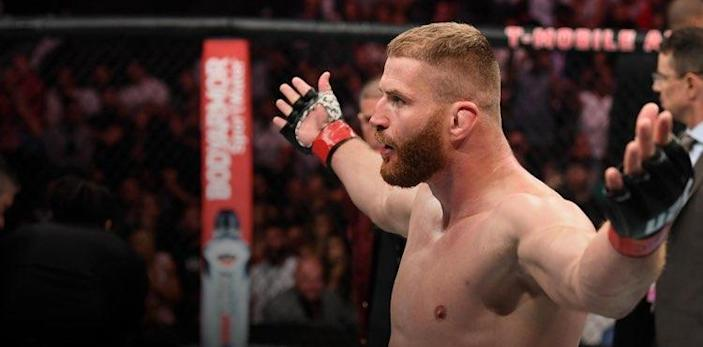 Jan Blachowicz at UFC on ESPN+ 22