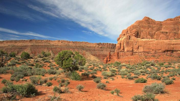 family vacations with baby or toddler: deserts (Martina Roth / featurePics)