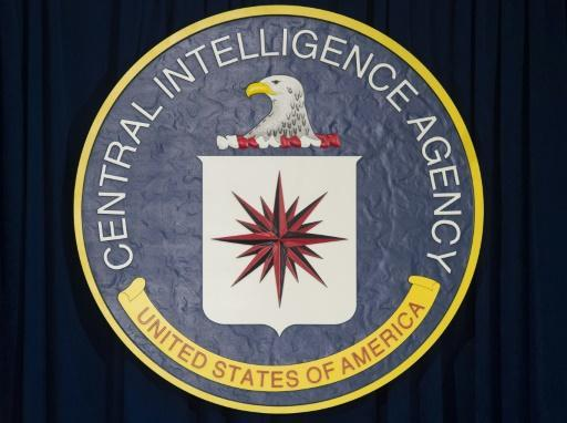 <p>Gina Haspel: black ops veteran nominated to lead CIA</p>
