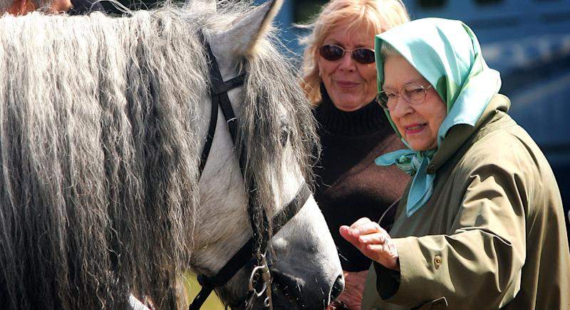 WINDSOR - MAY 11: HRH Queen Elizabeth II pats her horse Balmoral Melody as she attends the Royal windsor Horseshow on May 11, 2007 in Windsor, England. This is the second day of the show and the Queen's horse Balmoral Melody was the 'Supreme Champion' of the Highland Pony class. (Photo by Chris Jackson/Getty Images)