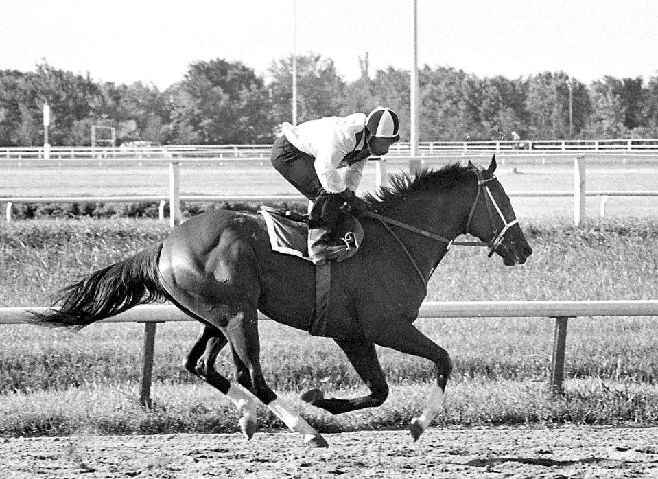 FILE - In this June 29, 1973, file photo, Triple Crown winner Secretariat has four hooves in the air as he gallops during a workout with exercise jockey George Davis in saddle at Arlington Park race track in Arlington Heights, Ill. The racetrack is expected to close after the completion of racing on Sept. 25, with ownership taking bids for the future of the land. (AP Photo/File)