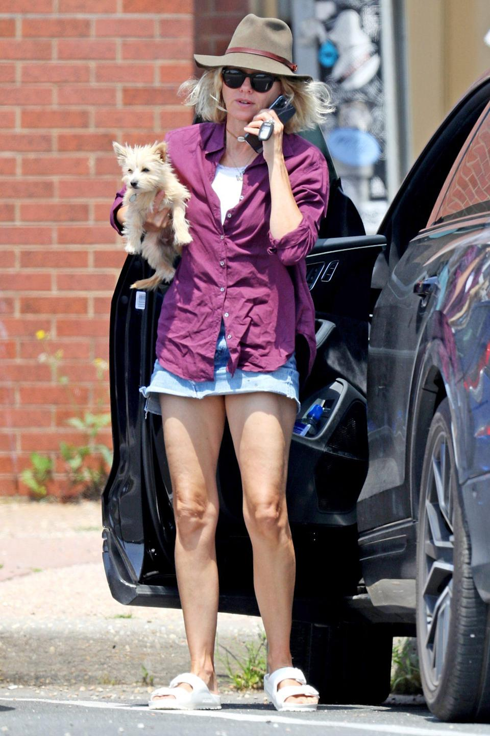 <p>Naomi Watts carries her dog while out and about in The Hamptons, New York, on Thursday.</p>