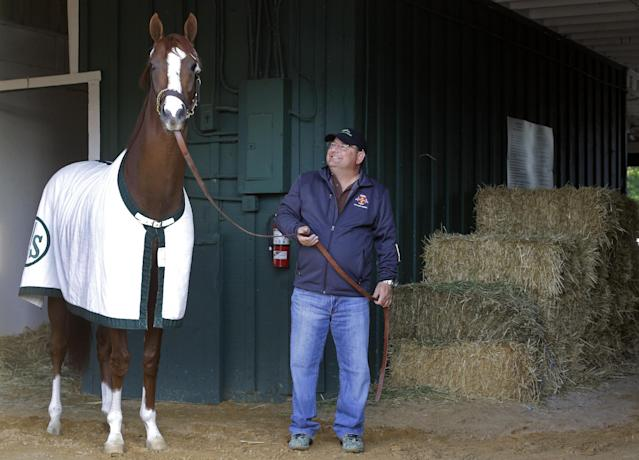 Assistant trainer Alan Sherman stands with Kentucky Derby and Preakness winner California Chrome during a walk at Pimlico Race Course in Baltimore, Monday, May 19, 2014. California Chrome is scheduled to depart Tuesday for Belmont Park, N.Y. The Belmont Stakes horse race takes place June 7. (AP Photo/Patrick Semansky)