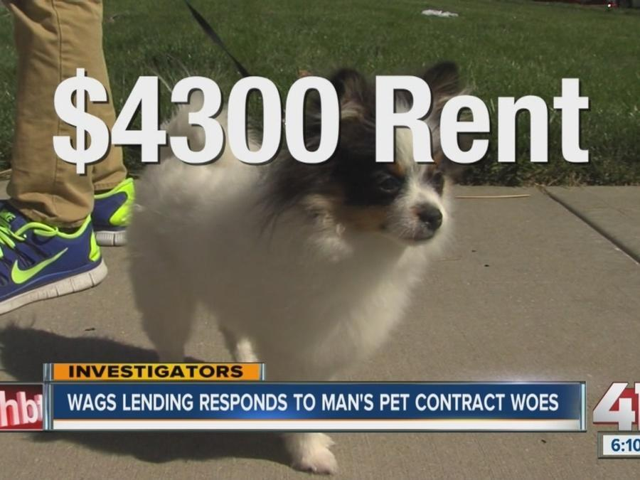 Wags Lending responds to man's pet contract woes