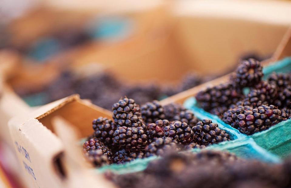 "<p>The marionberry is a cross between two different kinds of blackberries; it was developed and cultivated at Oregon State University in the 1940s and introduced to the state in 1956.<a href=""https://www.thedailymeal.com/best-food-drink-oregon-2018-slideshow?referrer=yahoo&category=beauty_food&include_utm=1&utm_medium=referral&utm_source=yahoo&utm_campaign=feed"" rel=""nofollow noopener"" target=""_blank"" data-ylk=""slk:Oregon"" class=""link rapid-noclick-resp""> Oregon</a>'s climate is practically perfect for the growing of marionberries, but because the fragile fruit doesn't ship well, it's not seen much outside of the region. It's primarily used in marionberry pie, jam and<a href=""https://www.thedailymeal.com/eat/unexpected-ice-cream-flavors-gallery?referrer=yahoo&category=beauty_food&include_utm=1&utm_medium=referral&utm_source=yahoo&utm_campaign=feed"" rel=""nofollow noopener"" target=""_blank"" data-ylk=""slk:ice cream"" class=""link rapid-noclick-resp""> ice cream</a>.</p>"
