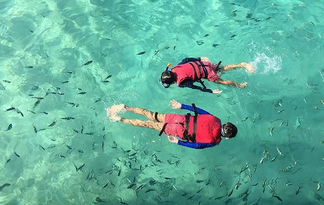Snorkelling fun for the kids. Photo: Getty Image