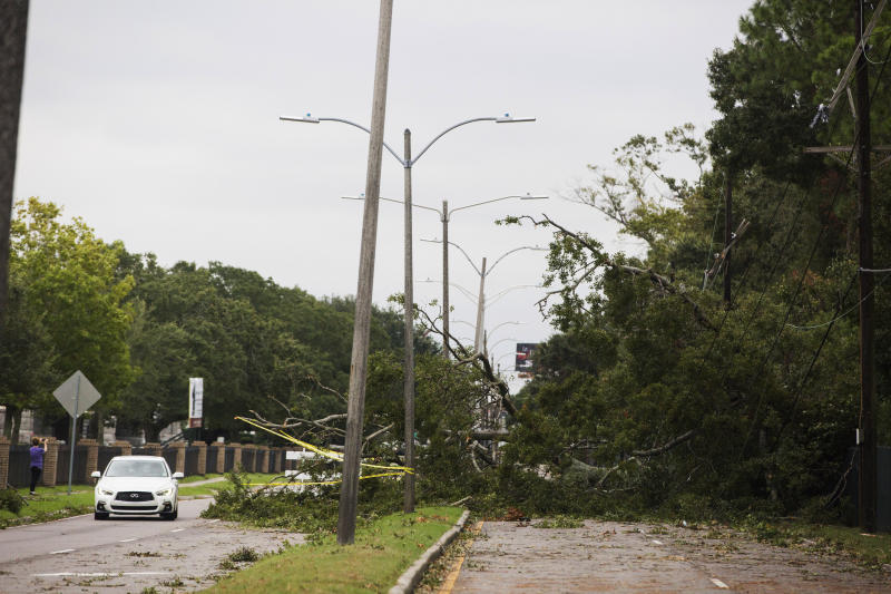 A tree falls on Metairie Road and takes out power lines in New Orleans on Saturday, Oct. 26, 2019, after a storm system called Tropical Storm Olga went through the area. (Sophia Germer/The Advocate via AP)