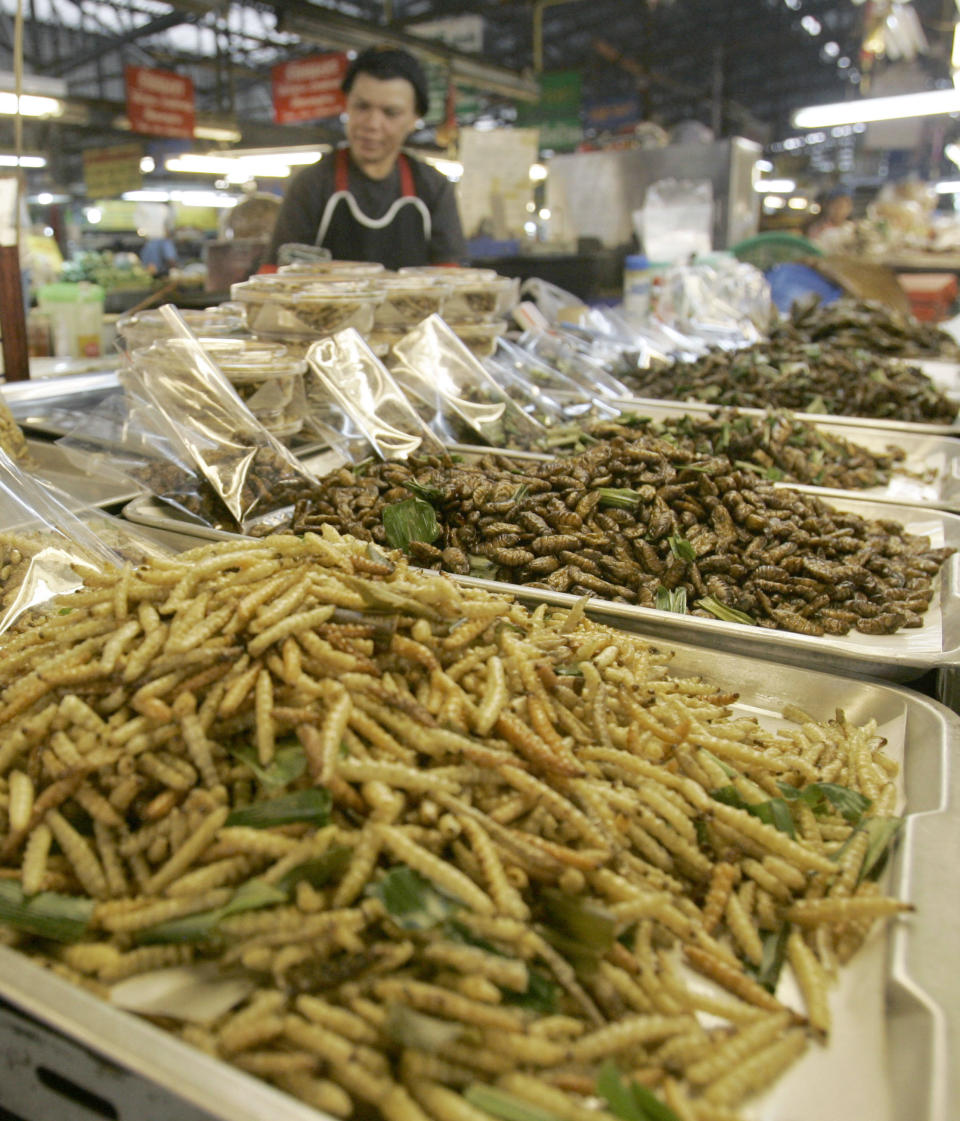 A Thai woman sells fried bugs at a  market in Chiang Mai  province, Thailand, on Tuesday, Feb. 19, 2008. With famine an every present threat in Africa and global warming predicted to reduce agriculture yields in poor countries, one group of scientists are offering up a novel solution to help alleviate world hunger: Eat more bugs. (AP Photo/Sakchai Lalit)