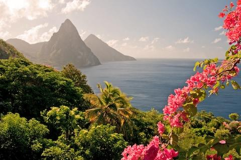 St Lucia's mountains will grab your attention - Credit: iStock