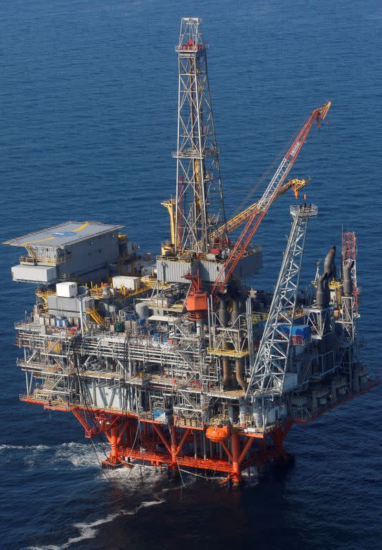 FILE PHOTO: The Petronius oil platform is seen from the air, located 100 miles off the coast of New Orleans in the Gulf of Mexico