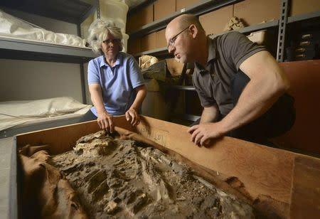 Dr. Janet Monge (L), Curator-in-Charge, Physical Anthropology Section of the Penn Museum and Dr. William Hafford, Ur Digitization Project Manager, look at a 6,500-year-old human skeleton, discovered in the basement of the Penn Museum in Philadelphia, Pennsylvania, in this undated handout photo courtesy of the Penn Museum. REUTERS/ Kyle Cassidy/Penn Museum/Handout via Reuters