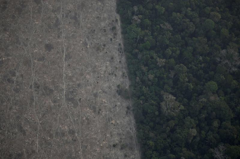 An aerial view shows a deforested plot of the Amazon near Porto Velho, Rondonia State, Brazil, Brazil August 21, 2019. REUTERS/Ueslei Marcelino