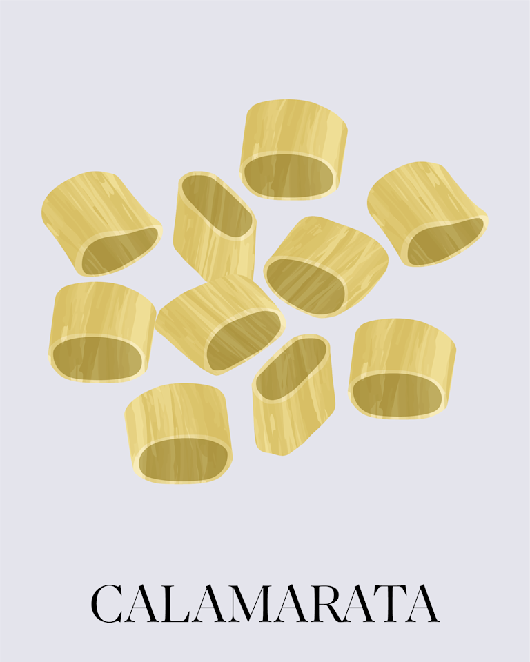 """<p>This thick, ring-shaped pasta is inspired by slices of calamari. The shape originated in southern region of Italy, where <a href=""""https://www.marthastewart.com/339273/seafood-pasta-recipes"""">fresh seafood-inspired pasta dishes</a> reign. It can be found in many grocery stores near other artisanal pasta shapes. Make <a href=""""https://www.marthastewart.com/1104483/calamarata-roasted-eggplants-tomatoes-and-olives"""">Calamarata with Roasted Eggplants, Tomatoes, and Olives</a> for a delicious, crowd-friendly meal.</p>"""