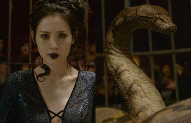 Who the Hell Is Nagini, the Snake Woman in 'Fantastic Beasts: The Crimes of Grindelwald'?