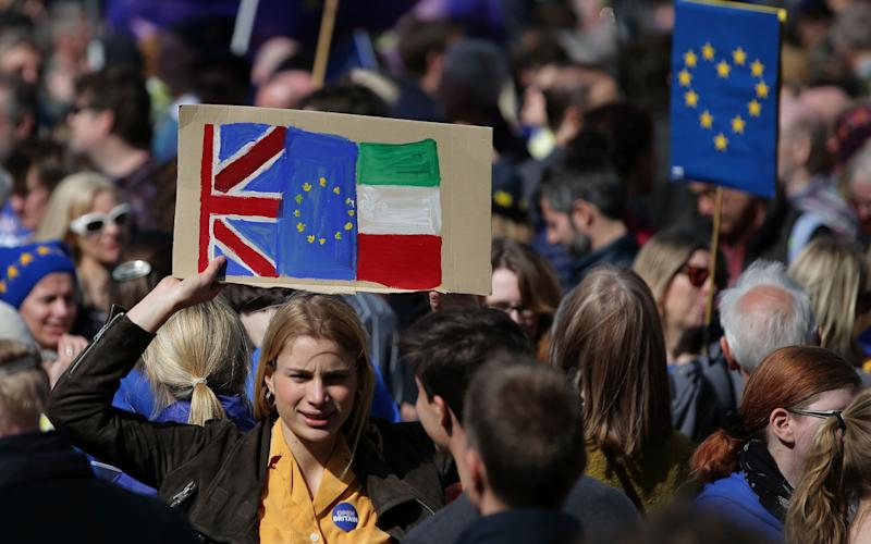 A demonstrator holds a placard bearing a Union, EU and Irish flag as she prepares to participate in an anti Brexit, pro-European Union (EU) march in London - AFP or licensors