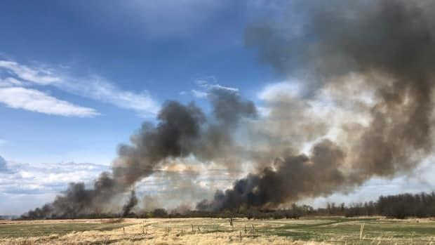 A grass fire burns Sunday afternoon in a marsh about 8 kilometres west of Libau, Man.  (Travis Golby/CBC - image credit)