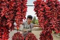 Red peppers drying along the side of the road to the town of Sidi Bouzid in central Tunisia (AFP/ANIS MILI)