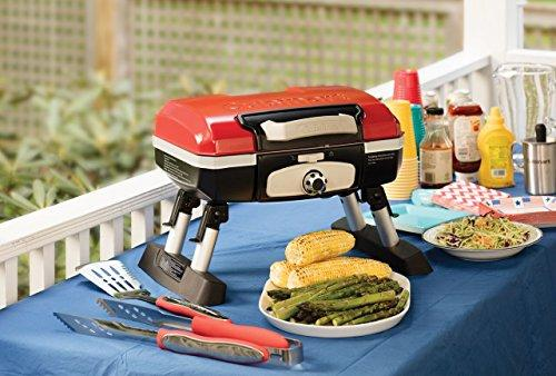 "<p><strong>Cuisinart</strong></p><p>amazon.com</p><p><strong>$67.57</strong></p><p><a href=""http://www.amazon.com/dp/B004H4WWA6/"" target=""_blank"">Buy Now</a></p><p>This portable gas grill makes it easy to picnic on-the-go. Use its briefcase-style handle to carry it to a park, beach, or campsite. It can cook up to 8 burgers at a time and weighs less than 15 pounds!</p>"
