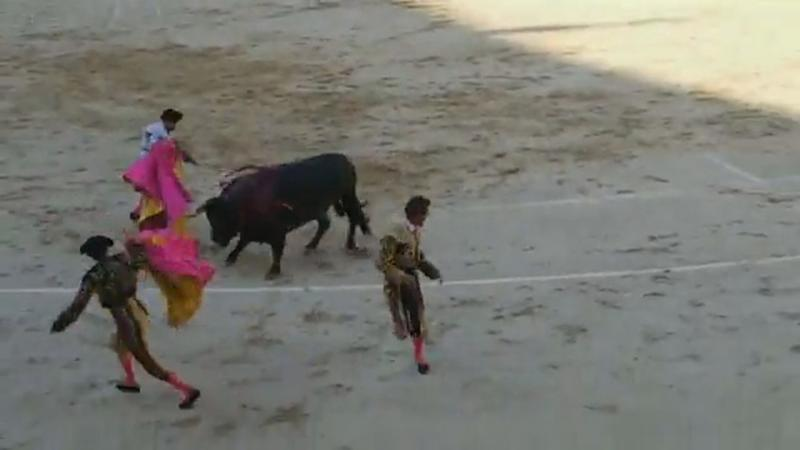 The Matador reportedly sustained two fractures and a 25-centimetre gash (CEN)