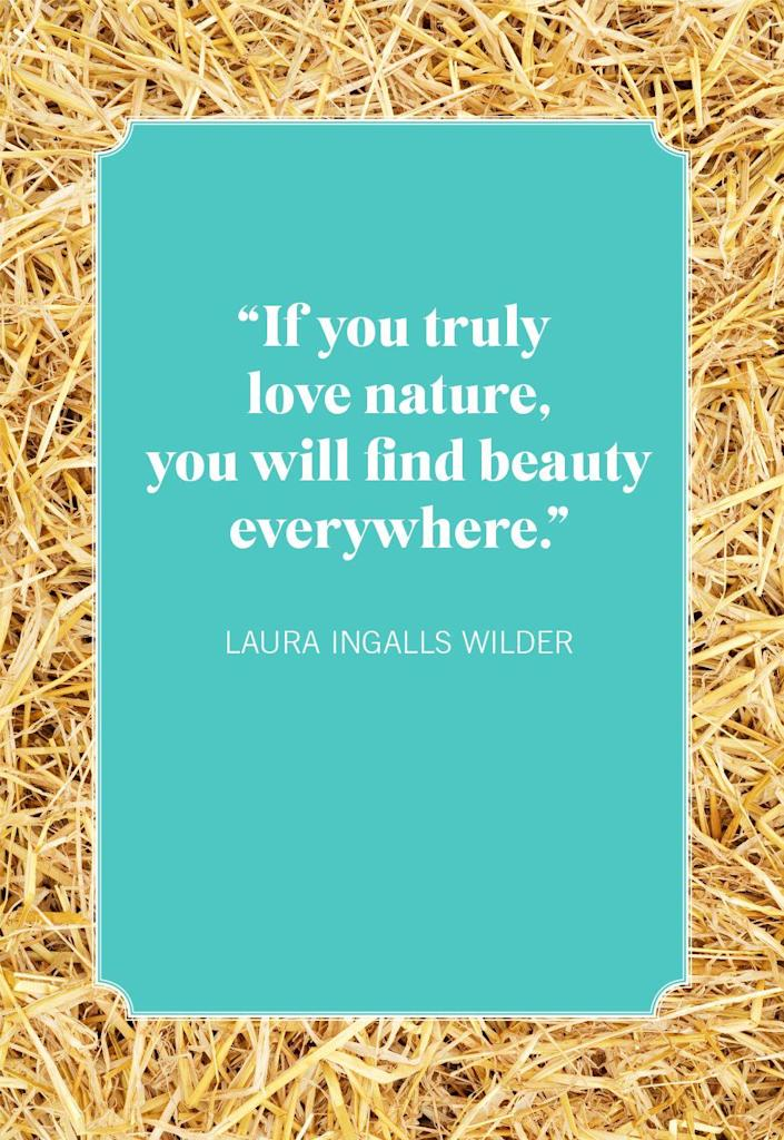 """<p>""""If you truly love nature, you will find beauty everywhere.""""</p>"""