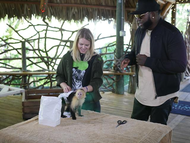"Zookeeper is one of the jobs David Ortiz tries on his new reality show, ""Big Papi Needs a Job."" (Fusion)"