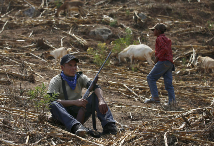 """Community policeman Silvano Martinez guards his 11-year-old nephew Geovanni Martinez as he observes his goats in a pasture outside Ayahualtempa, a town in Guerrero state where residents provide security from the violence of rivaling gangs in Mexico, Wednesday, April 28, 2021. The 11-year-old said he yearns to return to school, closed for the past year by the pandemic, and when asked if he would shoot at an enemy he issued a convincing """"Noo!"""" (AP Photo/Marco Ugarte)"""