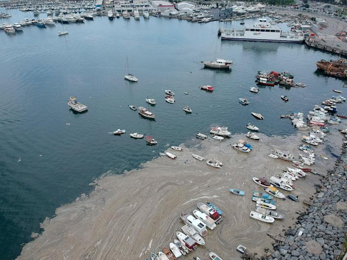 <p>A thick slimy layer of a mucilage substance has spread through the sea south of Istanbul, posing a threat to marine life</p> (AP)