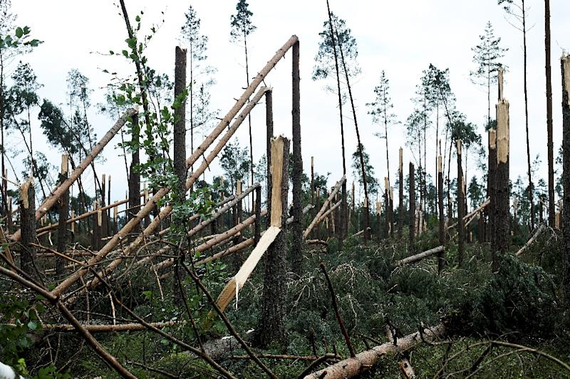 Severe storms passed over Poland causing damage to buildings, trees and electricity infrastructure in the Pomeranian province, where five people were killed and at least 30 people seriously injured