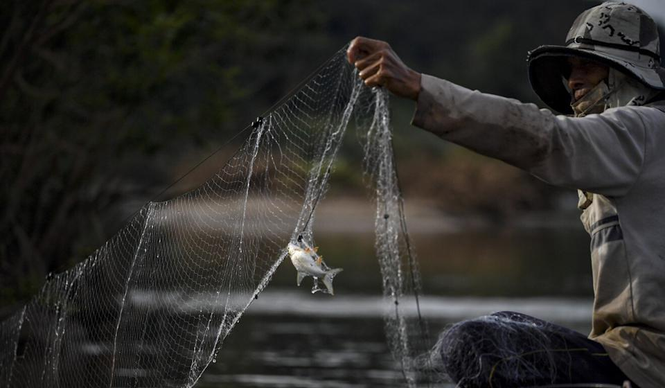 A Thai fisherman examines his nets during last year's droughts that had a devastating effect on fishing communties along the river. Photo: AFP