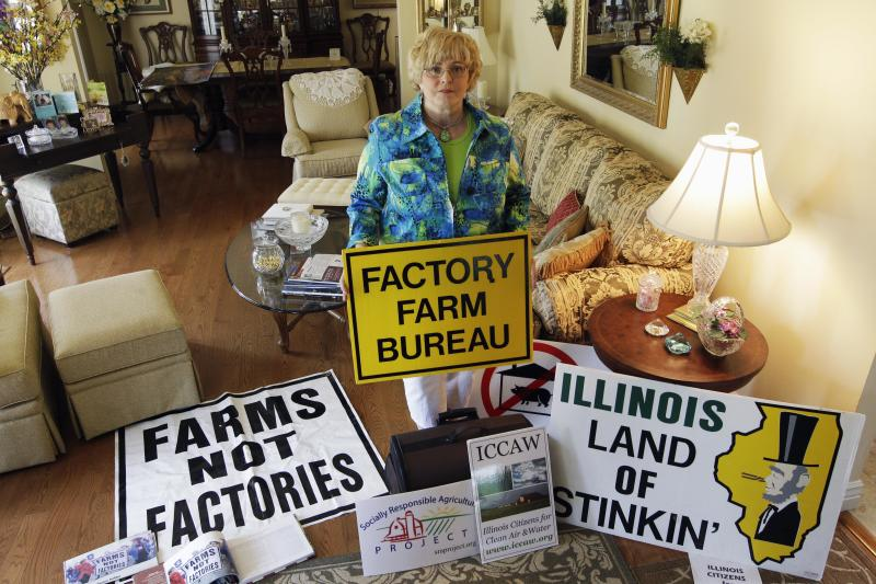 In this July, 28, 2012 photo, Karen Hudson, co-founder of Illinois Citizens for Clean Air and Water, poses with signs in Elmwood, Ill., opposing huge corporate-funded farms that are springing up across country.  Hudson says many rural communities have been divided over this issue. She says as these livestock farms have grown to house thousands and even tens of thousands of animals — there are very real concerns about air and water pollution. She is calling for compromise and more regulation. Four years after the U.S. Government Accountability Office raised concerns and 40 years after the Clean Water Act gave the EPA the authority to protect the nation's waterways, the agency still doesn't know the location of many livestock farms, let alone how much manure they generate or how the waste is handled, because most of that information is kept by various state and or local agencies _ or not collected at all. (AP Photo/M. Spencer Green)