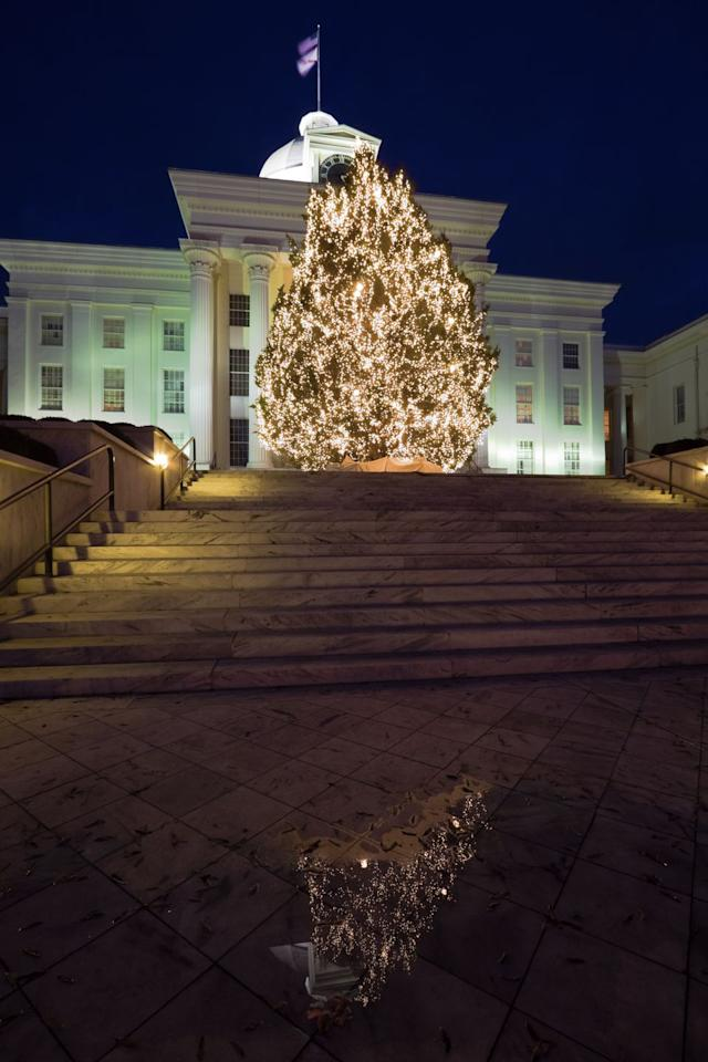 """<p>On the steps of Montgomery's <a rel=""""nofollow"""" href=""""https://www.tripadvisor.com/Attraction_Review-g30712-d105427-Reviews-Alabama_State_Capitol-Montgomery_Alabama.html"""">State Capitol building</a>, there's a white, sparkling tree that's not to be missed. Towering very nearly to the domed top of the 19th-century building, the tree is celebrated each year with a public event, complete with lively music and plenty of cheer.<br></p>"""