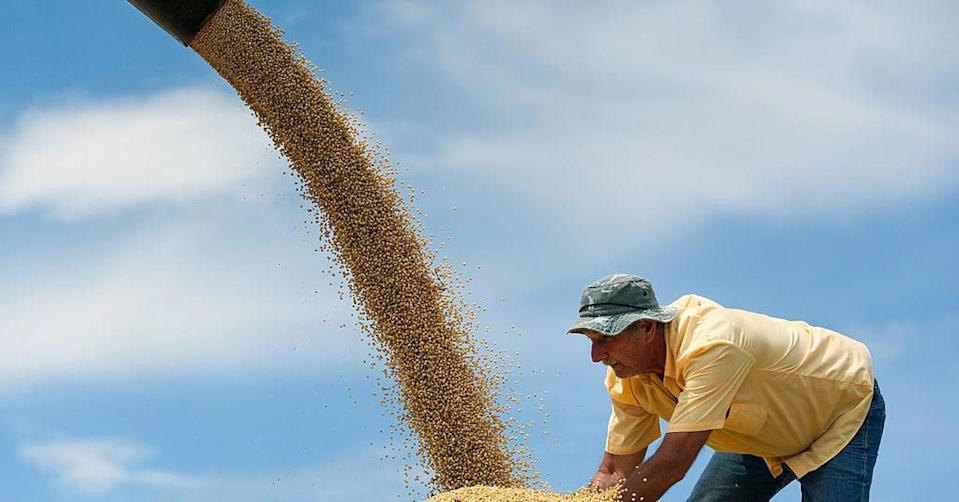 China has a huge appetite for American soybeans. Now it wants to leverage it in the trade dispute with President Trump. (Yasuyoshi Chiba | AFP | Getty Images)