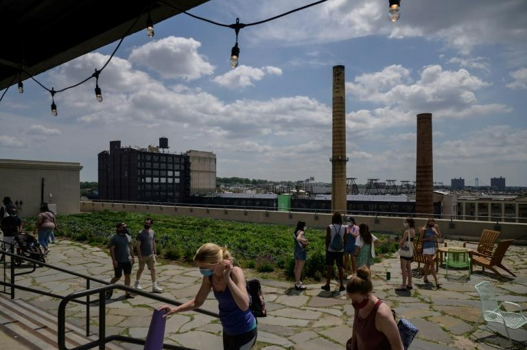 Across three New York rooftops, totalling more than 22,000 square metres (more than 236,000 square feet), Brooklyn Grange farms a wide variety of vegetables