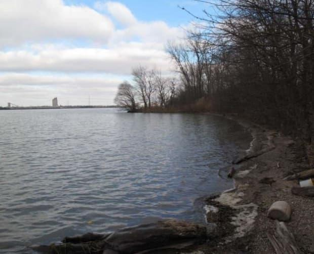 The 13-hectare natural area on the west side of Windsor is considered an ecological gem and is currently being managed by the Windsor Port Authority.