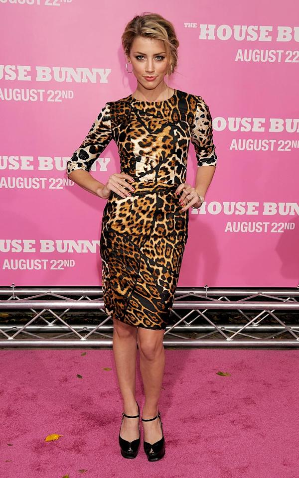 "<a href=""http://movies.yahoo.com/movie/contributor/1809059761"">Amber Heard</a> at the Los Angeles Premiere of <a href=""http://movies.yahoo.com/movie/1809921361/info"">The House Bunny</a> - 08/20/2008"