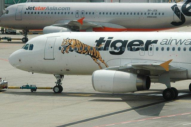 Tiger Singapore increased November traffic by a terrific 33% yoy