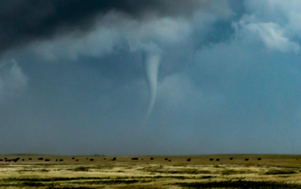 Tornado 101: What you need to know about staying safe