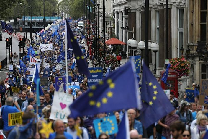 People carry EU flags during a March for Europe protest against the Brexit vote in London in September 2016 (AFP Photo/Justin Tallis)