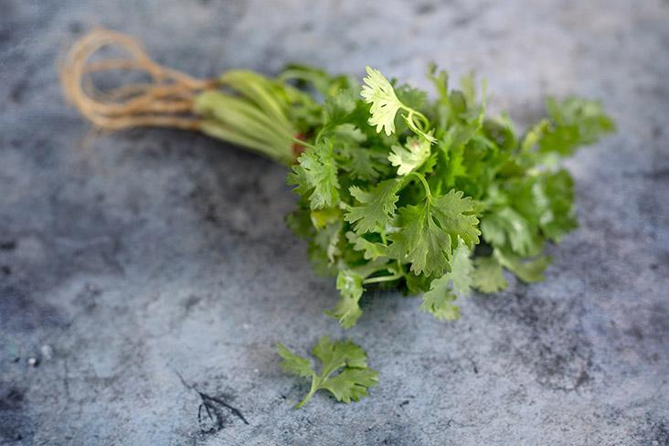 Garnish with cilantro leaves to balance the heady stew with some freshness.