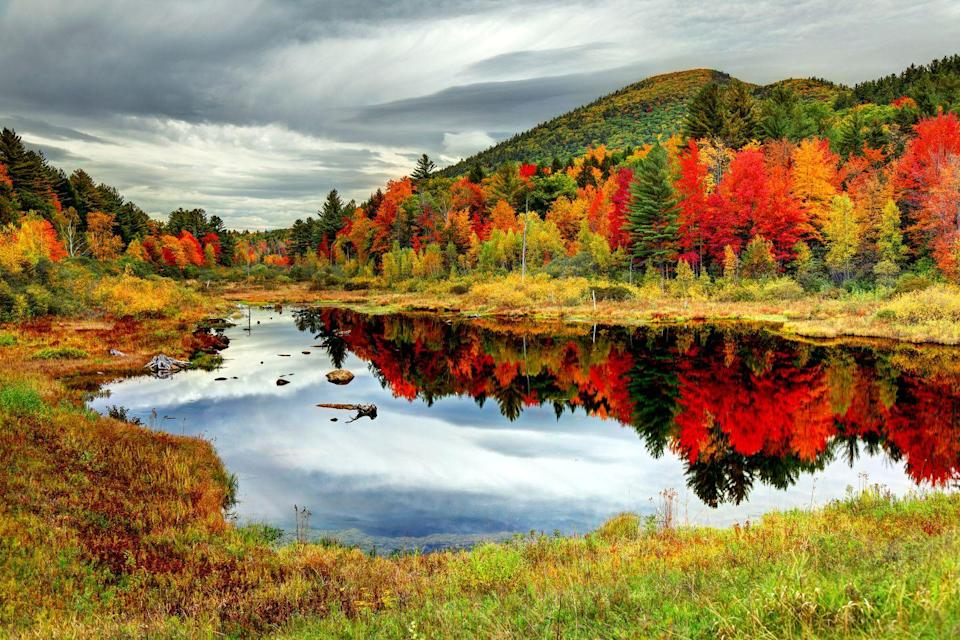 """<p><strong>Where to go:</strong> When it comes to fall foliage, it's hard to beat New Hampshire's White Mountains. The Kancamagus Highway cuts through the multicolored national forest with plenty of pull-offs for photo-ops. </p><p><strong>When to go: </strong><a href=""""https://www.visitnh.gov/foliage-tracker"""" rel=""""nofollow noopener"""" target=""""_blank"""" data-ylk=""""slk:Mid-October"""" class=""""link rapid-noclick-resp"""">Mid-October</a></p><p><a class=""""link rapid-noclick-resp"""" href=""""https://go.redirectingat.com?id=74968X1596630&url=https%3A%2F%2Fwww.tripadvisor.com%2FHotels-g659478-White_Mountains_New_Hampshire-Hotels.html&sref=https%3A%2F%2Fwww.redbookmag.com%2Flife%2Fg34045856%2Ffall-colors%2F"""" rel=""""nofollow noopener"""" target=""""_blank"""" data-ylk=""""slk:FIND A HOTEL"""">FIND A HOTEL</a></p><p><strong>RELATED: <a href=""""https://www.goodhousekeeping.com/life/parenting/g20087132/road-trip-games/"""" rel=""""nofollow noopener"""" target=""""_blank"""" data-ylk=""""slk:15+ Road Trip Games to Play on Your Next Family Vacation"""" class=""""link rapid-noclick-resp"""">15+ Road Trip Games to Play on Your Next Family Vacation</a></strong></p>"""