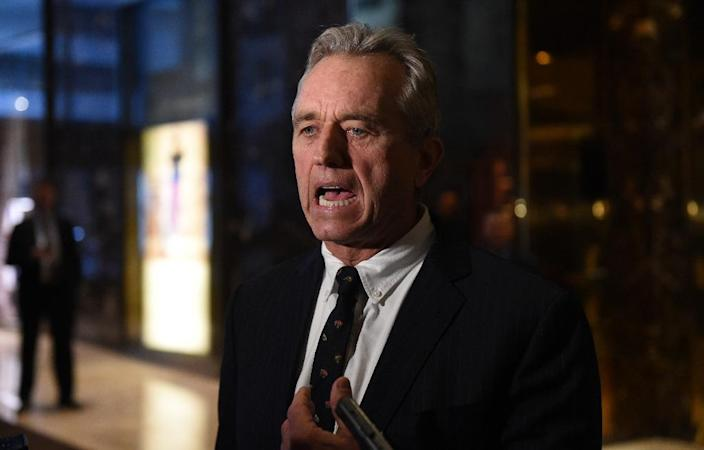 Robert F. Kennedy, Jr. talks to the press following a meeting with US President-elect Donald Trump at Trump Tower in New York, January 10, 2017 (AFP Photo/TIMOTHY A. CLARY)