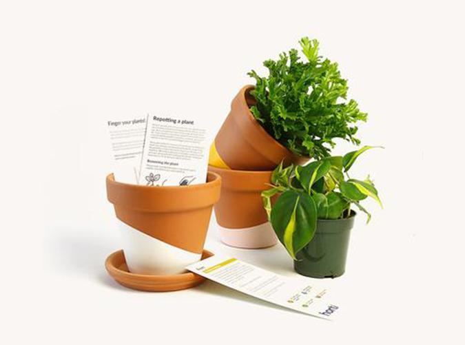 """<h2>37. Horti</h2> <p><strong>Cost: </strong>$22 to $35/month, based on your location</p> <p><strong>What you get: </strong>One plant and pot</p> <p><strong>Why we love it: </strong>Looking to grow your indoor jungle? Enter NYC-based plant shop <a href=""""https://heyhorti.com/collections/plant-subscription"""" rel=""""nofollow noopener"""" target=""""_blank"""" data-ylk=""""slk:Horti"""" class=""""link rapid-noclick-resp"""">Horti</a>. Their subscription service ships a hard-to-kill houseplant each month in a hand-painted terracotta pot and saucer (you pick the color) with instructions on how to care for it. Over time, they'll start sending more exotic plant types to help build up your green thumb.</p> <p><a class=""""link rapid-noclick-resp"""" href=""""https://heyhorti.com/collections/plant-subscription"""" rel=""""nofollow noopener"""" target=""""_blank"""" data-ylk=""""slk:Sign up for Horti"""">Sign up for <em>Horti</em></a></p>"""