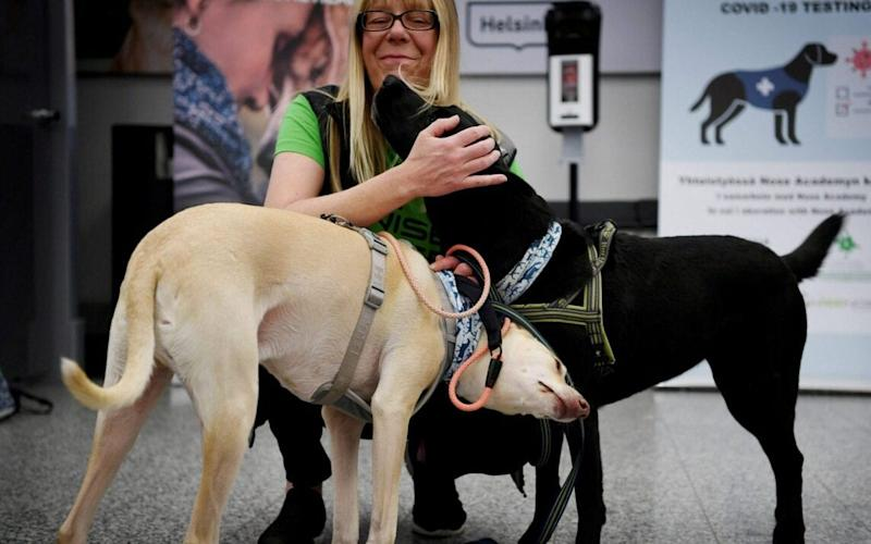 sniffer dogs - Reuters