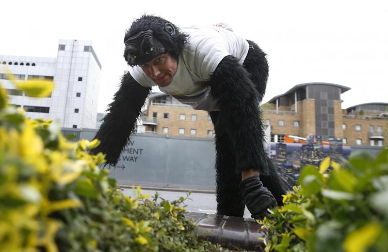 'Mr Gorilla' makes his way crawling along part of the London Marathon course in aid of the charity Gorilla Organization (AP)