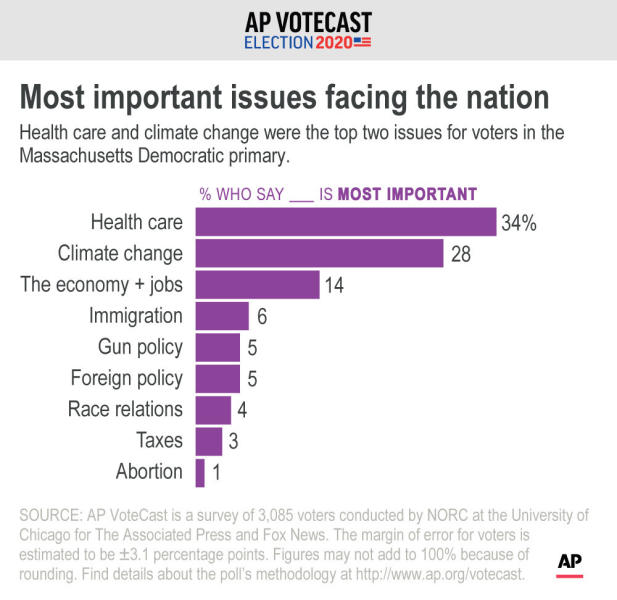 Most important issues for Democratic voters in Massachusetts;