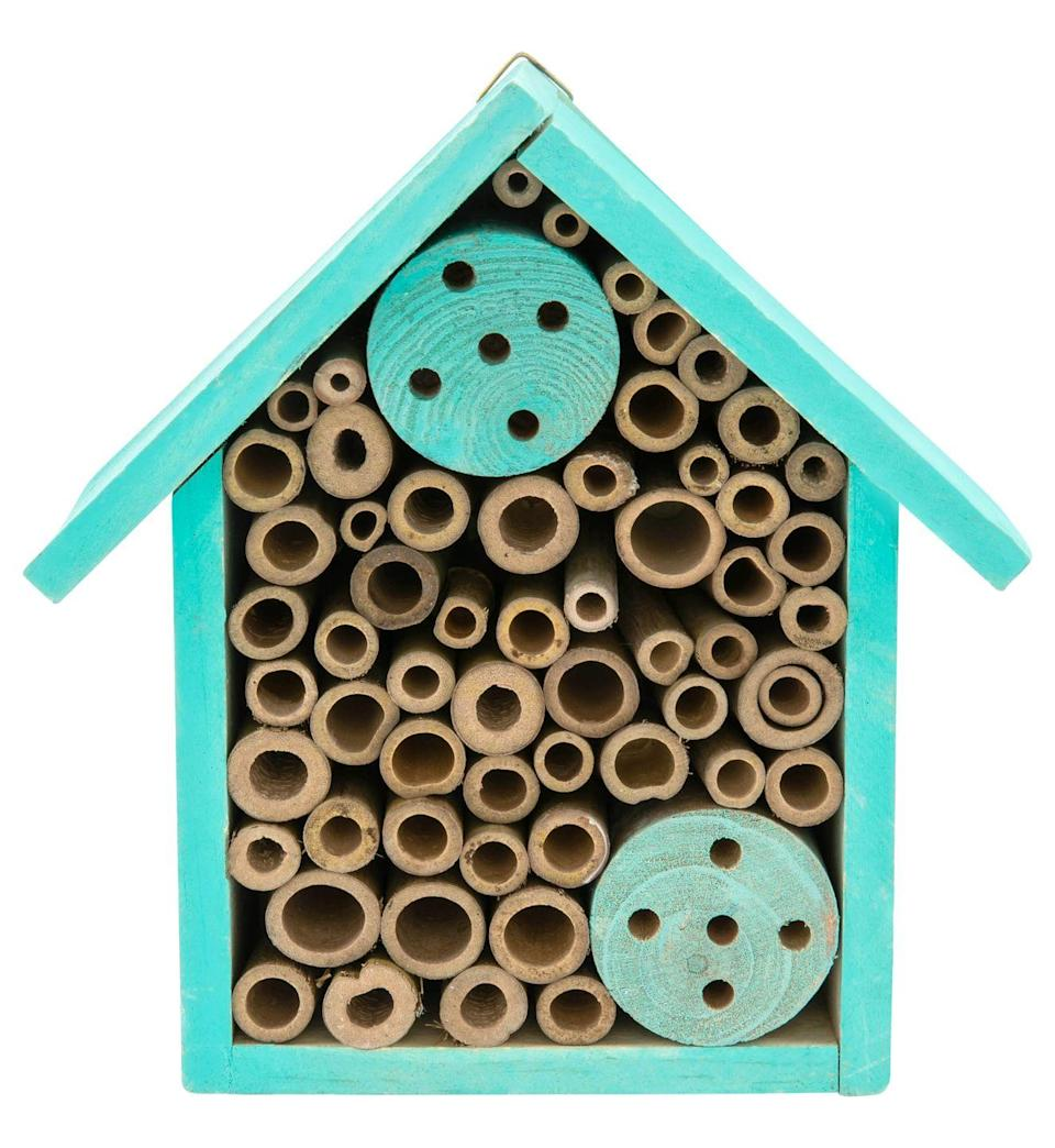 """<p>Create a haven for ladybirds, bees, spiders and woodlice by placing this insect house in your garden. The fun turquoise hue will add a pop of colour, while the circular wooden tubes provide snug, safe places for insects to hibernate.</p><p><strong>READ MORE</strong>: <a href=""""https://www.housebeautiful.com/uk/garden/a30652704/bug-hotel/"""" rel=""""nofollow noopener"""" target=""""_blank"""" data-ylk=""""slk:How to make a bug hotel in 5 easy steps"""" class=""""link rapid-noclick-resp"""">How to make a bug hotel in 5 easy steps</a></p><p><a class=""""link rapid-noclick-resp"""" href=""""https://www.poundland.co.uk/store-finder/"""" rel=""""nofollow noopener"""" target=""""_blank"""" data-ylk=""""slk:FIND NEAREST STORE"""">FIND NEAREST STORE</a></p>"""