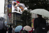 People walk by a 3D video advertisement display of a giant cat that was recently installed in the famed Shinjuku shopping district in Tokyo on Friday, July 9, 2021. (AP Photo/Hiro Komae)