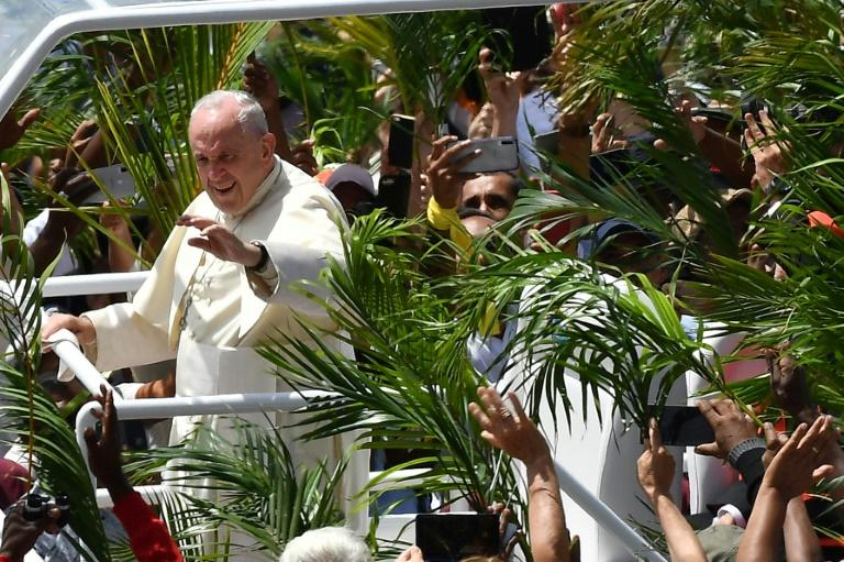 Throngs of cheering faithful waving palm fronds lined the streets of Port Louis as the popemobile shuttled the Argentine pontiff to the hilltop Mary Queen of Peace Monument (AFP Photo/Tiziana FABI                        )